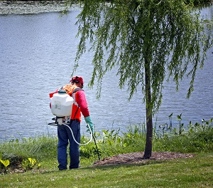 lawn care Lake Nona Florida